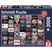 Puzzle 2000p Pensée fleurie