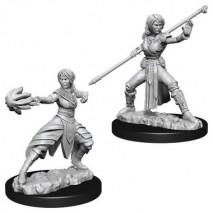 D&D Miniatures Female Half-Elf Monk