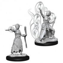 D&D Miniatures Female Human Warlock