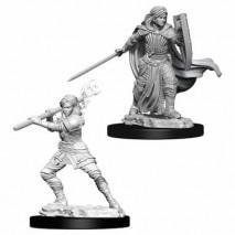 D&D Miniatures Female Human Paladin