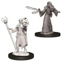 D&D Miniatures Male Elf Wizard